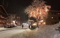 garniraetia - snowfall